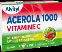 Govital Acerola 1000 à QUINCY-SOUS-SÉNART