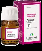 Lehning Arnica Complexe N° 1 Solution Buvable En Gouttes Fl/30ml à QUINCY-SOUS-SÉNART