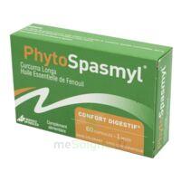 Phytospasmyl Caps B/60 à QUINCY-SOUS-SÉNART
