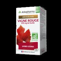 Arkogélules Vigne Rouge Bio Gélules Fl/45 à QUINCY-SOUS-SÉNART