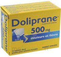 Doliprane 500 Mg Poudre Pour Solution Buvable En Sachet-dose B/12 à QUINCY-SOUS-SÉNART