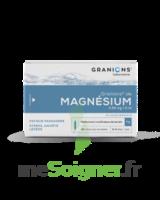 Granions De Magnesium 3,82 Mg/2 Ml S Buv 30amp/2ml à QUINCY-SOUS-SÉNART