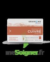 Granions De Cuivre 0,3 Mg/2 Ml S Buv 30amp/2ml à QUINCY-SOUS-SÉNART