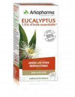 Arkogélules Eucalyptus Gélules Fl/45 à QUINCY-SOUS-SÉNART