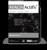 Synactifs Magnactifs Gélules B/60 à QUINCY-SOUS-SÉNART