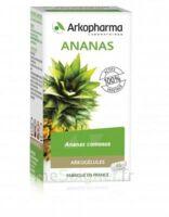 Arkogélules Ananas Gélules Fl/45 à QUINCY-SOUS-SÉNART