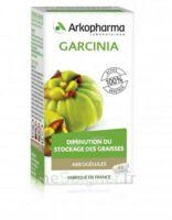 Arkogélules Garcinia Gélules Fl/45 à QUINCY-SOUS-SÉNART
