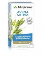 Arkogélules Avena Sativa Gélules Fl/45 à QUINCY-SOUS-SÉNART