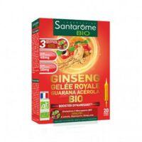 Santarome Bio Ginseng Gelée Royale Guarana Acérola Solution Buvable 20 Ampoules/10ml à QUINCY-SOUS-SÉNART