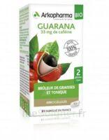 Arkogélules Guarana Bio Gélules Fl/45 à QUINCY-SOUS-SÉNART