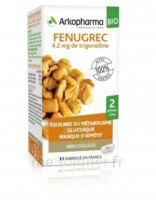 Arkogélules Fenugrec Bio Gélules Fl/40 à QUINCY-SOUS-SÉNART