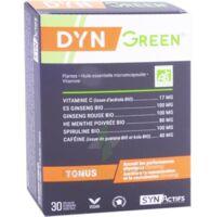 Synactifs Dyngreen Bio Gélules B/30 à QUINCY-SOUS-SÉNART