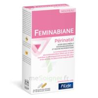 Pileje Feminabiane Périnatal 28 Gélules Blanches Et 28 Gélules Jaunes à QUINCY-SOUS-SÉNART