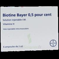Biotine Bayer 0,5 Pour Cent, Solution Injectable I.m. à QUINCY-SOUS-SÉNART