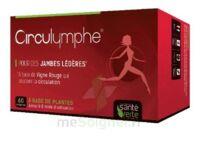 Santé Verte Circulymphe Triple Actions B/60 à QUINCY-SOUS-SÉNART