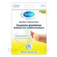 Scholl Coussin Plantaire Douleurs Métatarsales T2 à QUINCY-SOUS-SÉNART