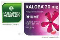 Kaloba 20 Mg Comprimé Pelliculé Plq/21 à QUINCY-SOUS-SÉNART