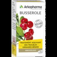 Arkogelules Busserole Gélules Fl/45 à QUINCY-SOUS-SÉNART