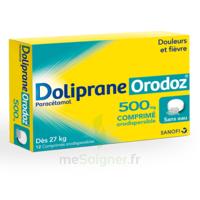 Dolipraneorodoz 500 Mg, Comprimé Orodispersible à QUINCY-SOUS-SÉNART