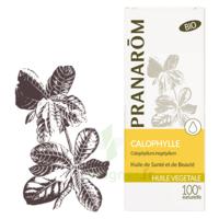 Pranarom Huile Végétale Bio Calophylle 50ml à QUINCY-SOUS-SÉNART