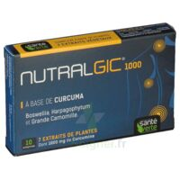 Nutralgic Comprimés Inflammations B/10 à QUINCY-SOUS-SÉNART