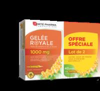 Forte Pharma Gelée Royale 1000 Mg Solution Buvable 2*b/20 Ampoules/10ml à QUINCY-SOUS-SÉNART