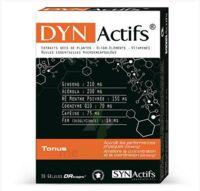 Synactifs Dynactifs Gélules B/30 à QUINCY-SOUS-SÉNART