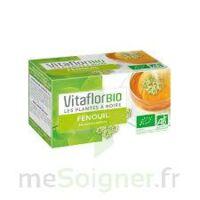 Vitaflor - Fenouil Tisane 100g à QUINCY-SOUS-SÉNART