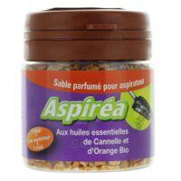 Aspiréa Grain Pour Aspirateur Cannelle Orange Huile Essentielle Bio 60g à QUINCY-SOUS-SÉNART