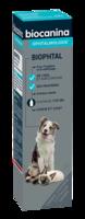 Biophtal Solution Externe 125ml à QUINCY-SOUS-SÉNART