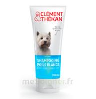 Clément Thékan Shampooing Poils Blancs T/200ml à QUINCY-SOUS-SÉNART