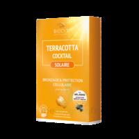 Terracotta Cocktail Solaire Comprimés B/30 à QUINCY-SOUS-SÉNART