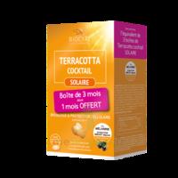 Terracotta Cocktail Solaire Comprimés 3*b/30 à QUINCY-SOUS-SÉNART