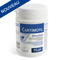 Pileje Cartimotil Structure 60 Comprimés Sécables à QUINCY-SOUS-SÉNART