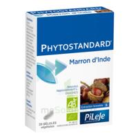 Pileje Phytostandard - Marron D'inde 20 Gélules Végétales à QUINCY-SOUS-SÉNART