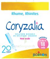 Boiron Coryzalia Solution Buvable Unidose B/20 à QUINCY-SOUS-SÉNART