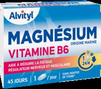 Govital Magnésium Vitamine B6 Comprimés B/45 à QUINCY-SOUS-SÉNART