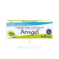 Boiron Arnigel Gel T(alumino-plastique)/45g à QUINCY-SOUS-SÉNART