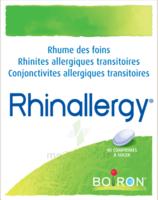 Boiron Rhinallergy Comprimés B/40 à QUINCY-SOUS-SÉNART